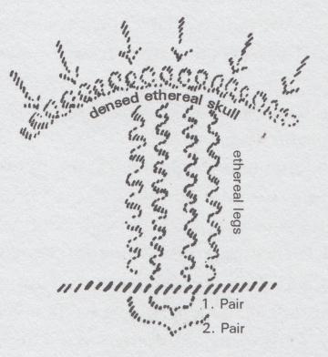 """Skizze des Aufbaus ätherischer """"Lebens-Säulen"""" in unserem Ätherleib. Von Rudolf Steiner."""